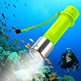 Bluefire fluorescent underwater torch